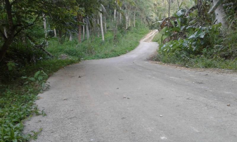 San Pedro 1 Barangay Road