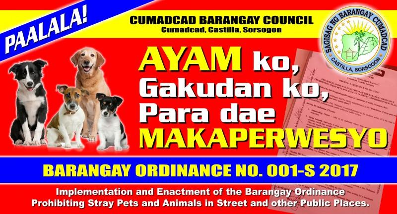 Barangay Ordinance
